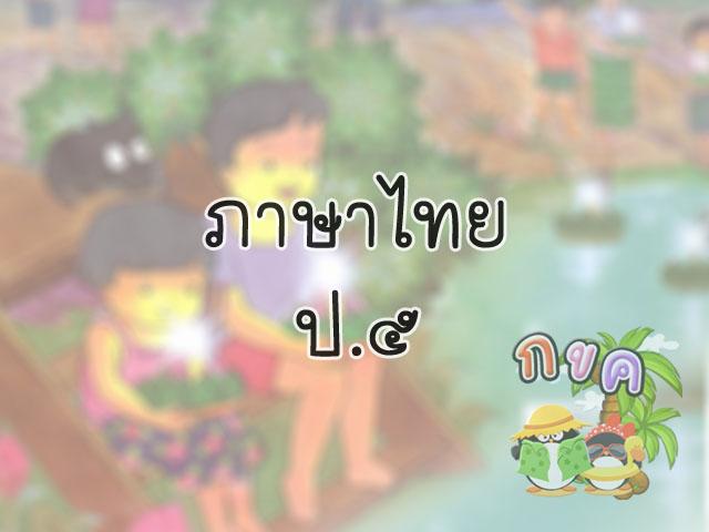 thaip5