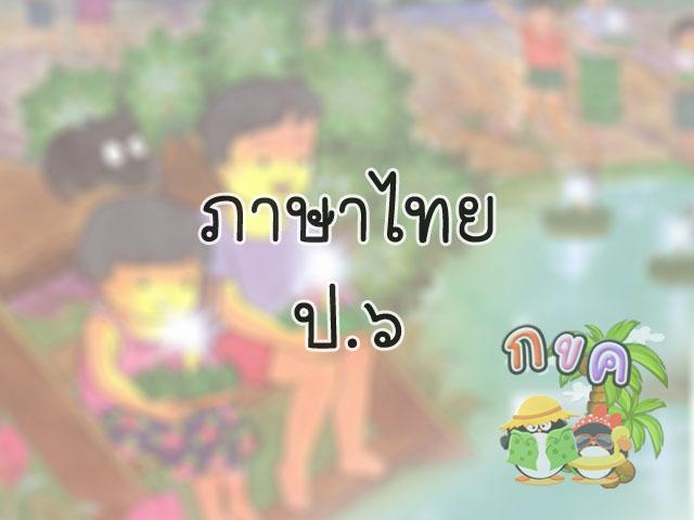 thaip6